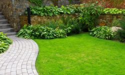 garden clearance wirral