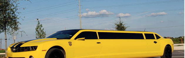 Fort Worth Limo Services